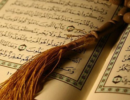 Learn Online Quran with Best Quran Tutors
