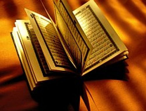 Find the best Quran Learning and Teaching Academy